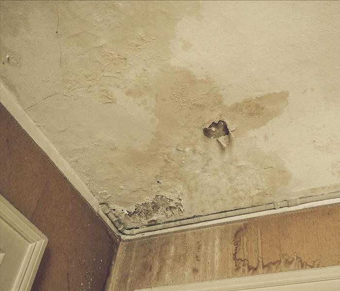 Ceiling discoloration due to water damage and mold growth