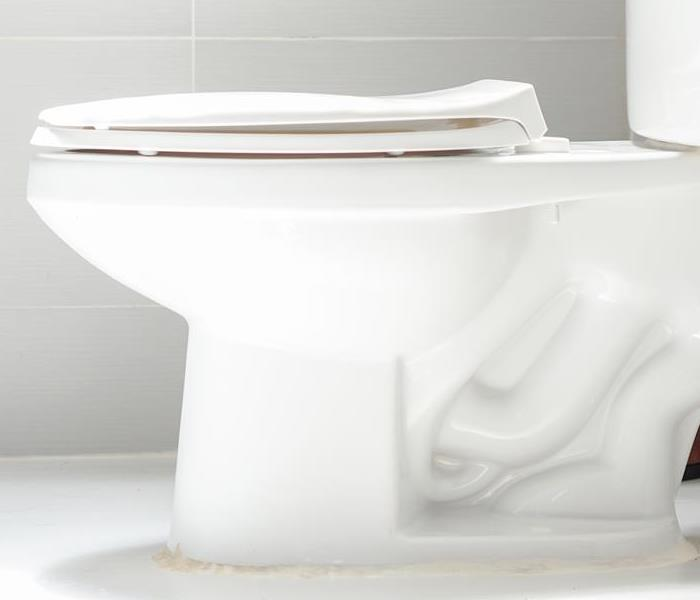 Water Damage Does Your Toilet Overflow While You Shower?